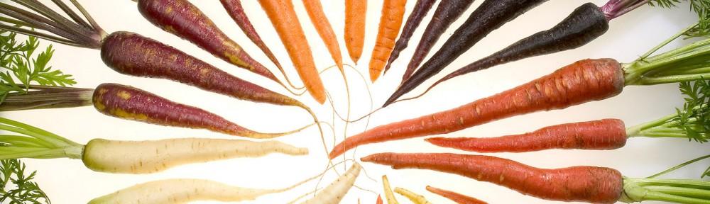 Säsongsmatsbloggen